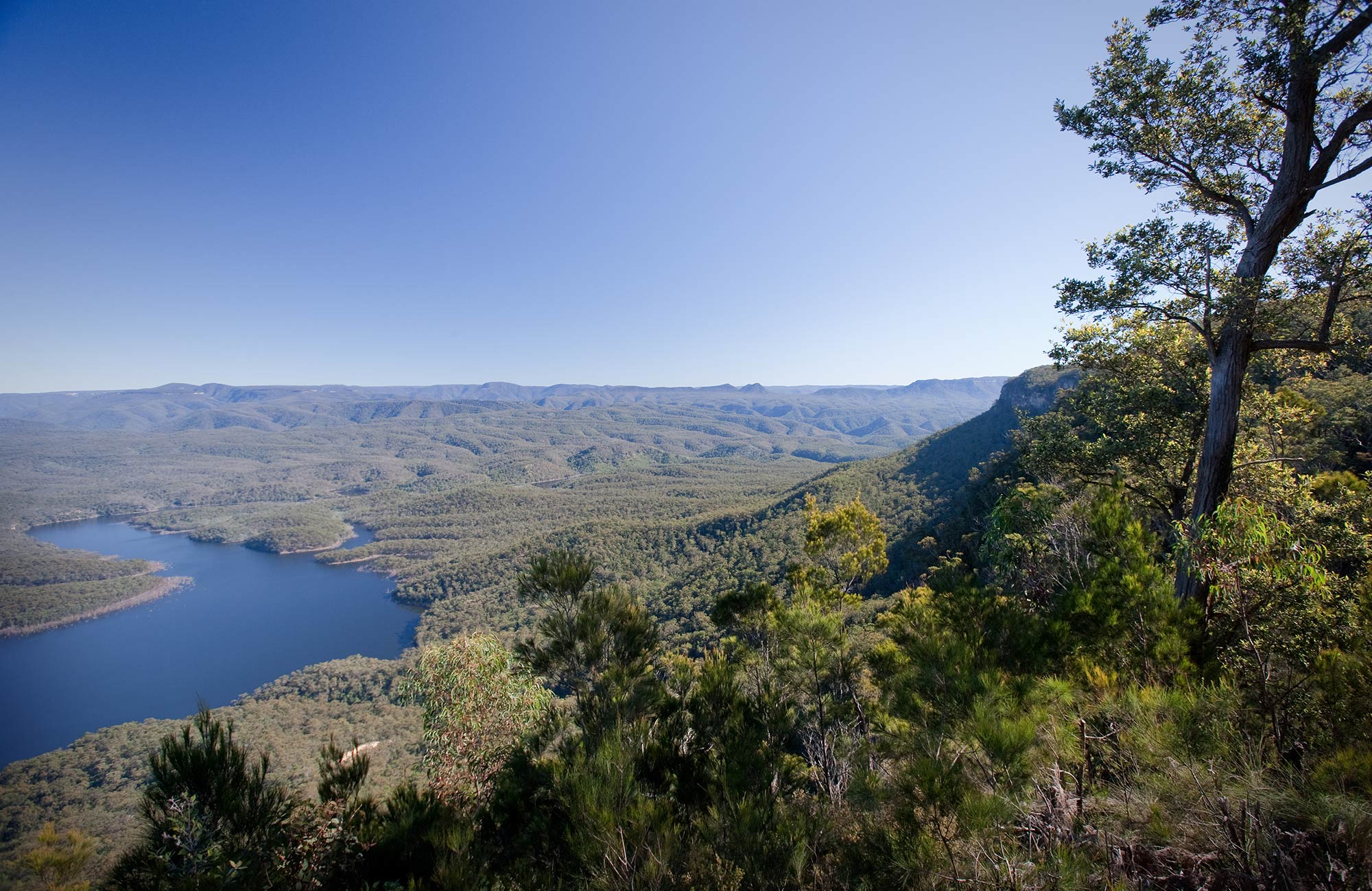 Views from McMahons Point lookout over Lake Burragorang, Blue Mountains National Park. Photo: Nick Cubbin/OEH
