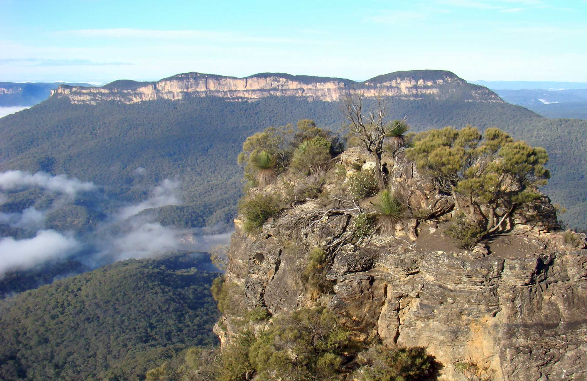 Mount Solitary Walking Track, Blue Mountains National Park. Photo: Steve Alton/NSW Government