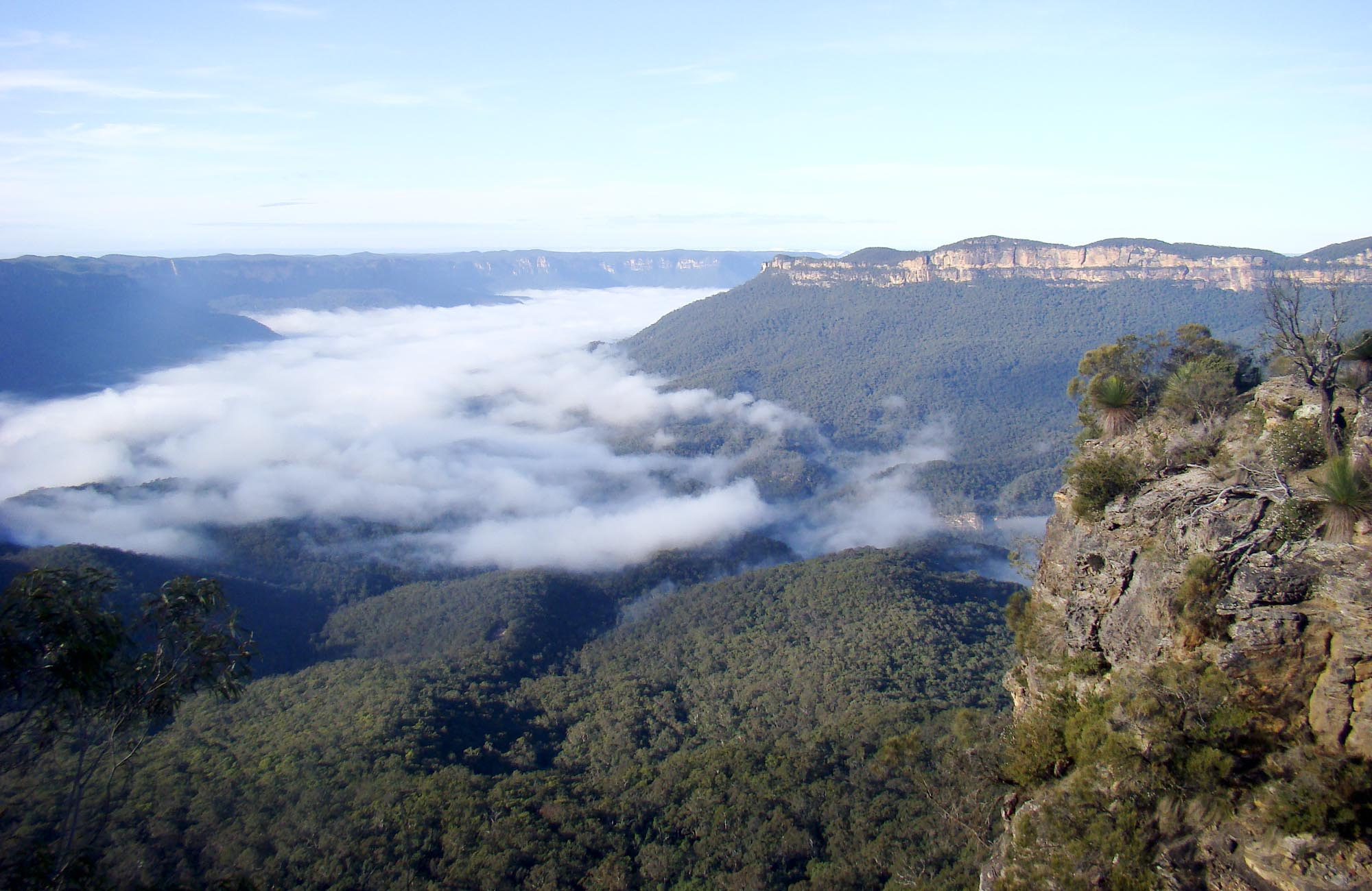 Prince Henry Cliff walk, Echo Point to Scenic World, Blue Mountains National Park. Photo: Steve Alton/OEH