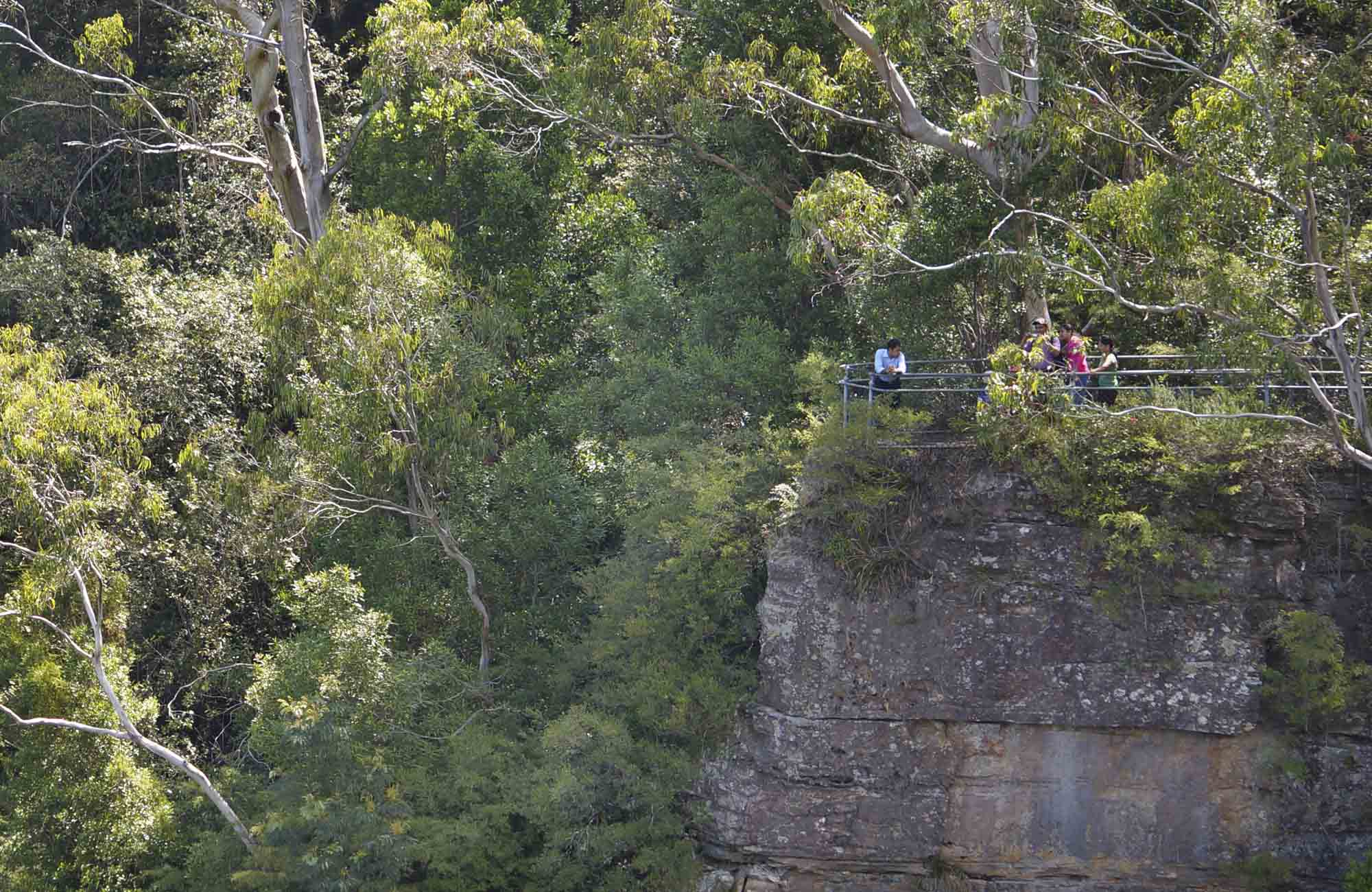 Vanimans Lookout, Round Walking Track, Blue Mountains National Park. Photo: Steve Alton/NSW Government