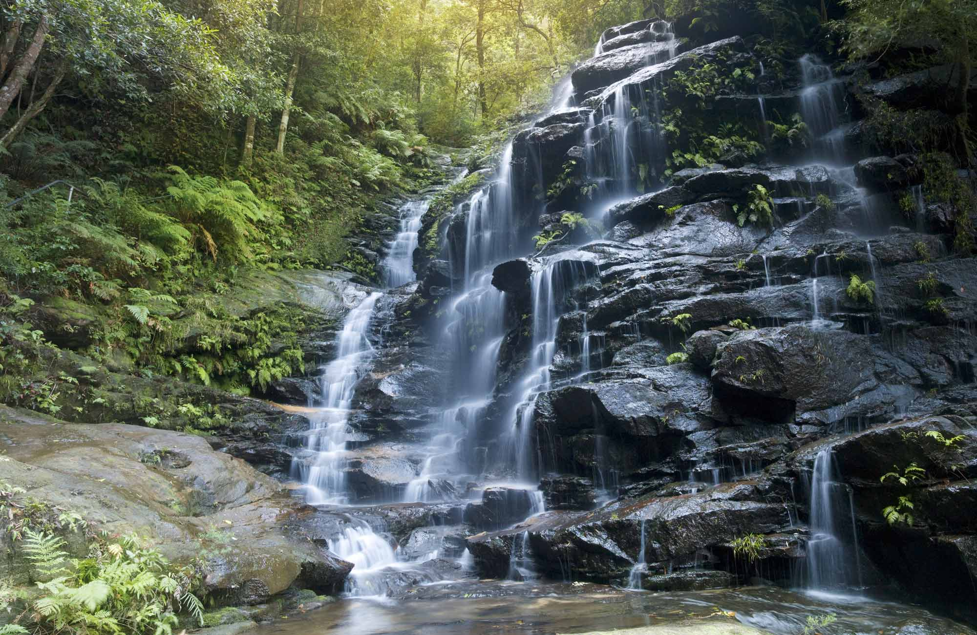 Sylvia Falls, Valley of the Waters, Blue Mountains National Park. Photo: David Finnegan/OEH