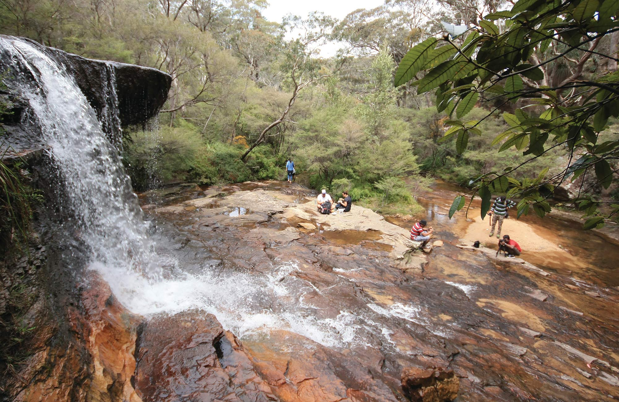 Vistors picnic below Weeping Rock waterfall, Wentworth Falls, Blue Mountains National Park. Photo: Elinor Sheargold/OEH.