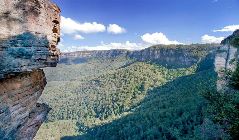 Dardanelles Pass loop walking track, Blue Mountains National Park. Photo: Nick Cubbin