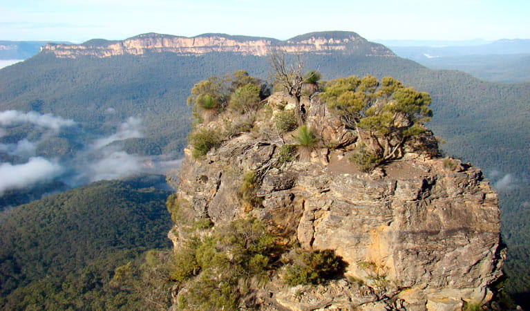 Echo Point (Three Sisters), Blue Mountains National Park. Photo: Steve Alton