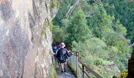 Furber Steps - Scenic Railway walk, Blue Mountains National Park. Photo: Steve Alton