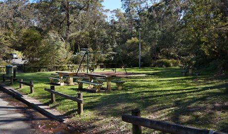 Gordon Falls Lookout and Picnic Area, Blue Mountains National Park. Photo: Steve Alton/NSW Government