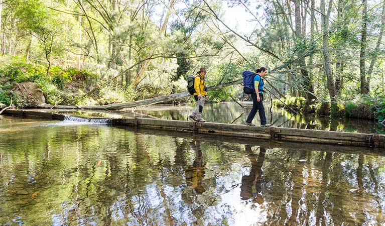 Hikers cross the Kedumba River, Blue Mountains National Park. Photo: Simone Cottrell/OEH
