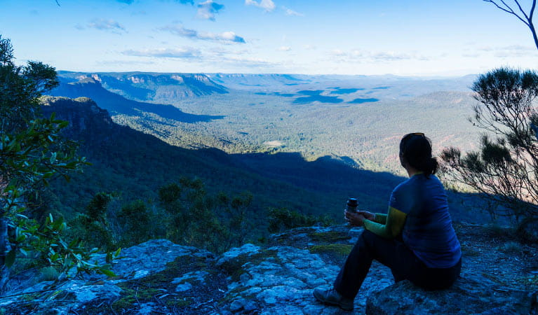 A hiker looks over the Kedumba Valley, near Wentworth Falls, Blue Mountains National Park. Photo: Simone Cottrell/OEH
