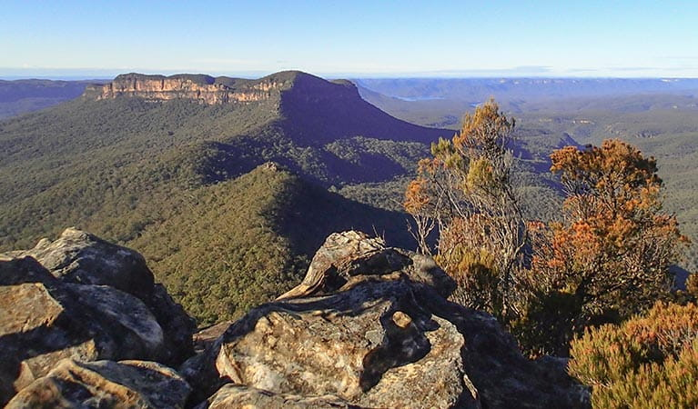 View of Mount Solitary from Ruined Castle, Blue Mountains National Park. Photo: Aine Gliddon/OEH
