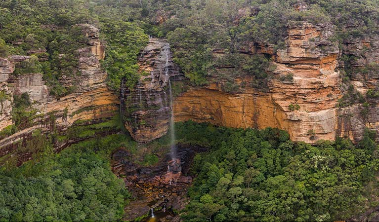 Wentworth Falls waterfall, Blue Mountains National Park. Photo: Destination NSW