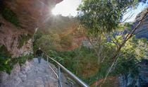 Fern Bower Amphitheatre walk, Blue Mountains National Park. Photo: Nick Cubbin/OEH
