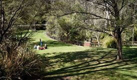 Picnic area in the Blue Mountains. Photo: Steve Alton