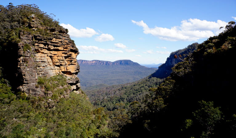 Views of Mount Solitary in the Blue Mountains. Photo: Steve Alton