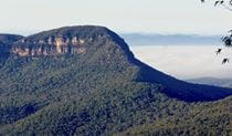 Mount Solitary Walking Track, Blue Mountains National Park. Photo: Aine Gliddon/NSW Government