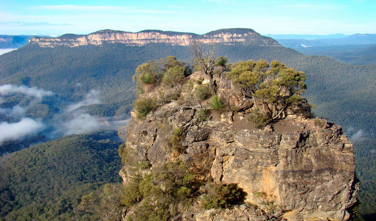 One of the Three Sisters, Mount Solitary Walking Track, Blue Mountains National Park. Photo: Steve Alton/NSW Government
