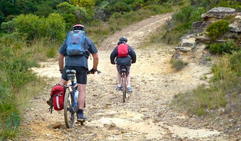 Mountain bike trails sydney
