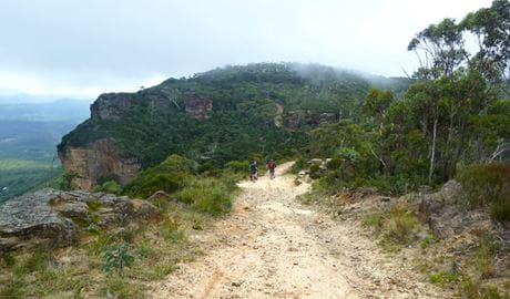 Narrow Neck Fire Trail, Blue Mountains National Park. Photo: Aine Gliddon/NSW Government