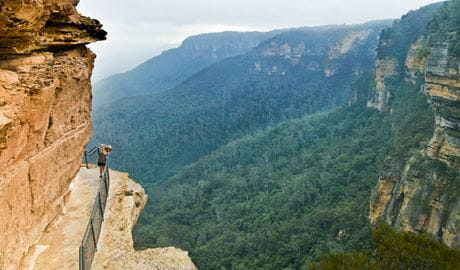 National Pass, Blue Mountains National Park. Views of Wentworth Falls waterfall plunging down into the Jamison Valley. Photo: David Finnegan/NSW Government