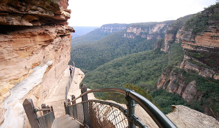 National Pass stairs and cliff-edge track at Wentworth Falls, Blue Mountains National Park. Photo: E Sheargold/OEH