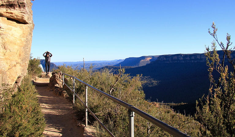 Prince Henry Cliff walk in Blue Mountains National Park. Photo: Natasha Webb