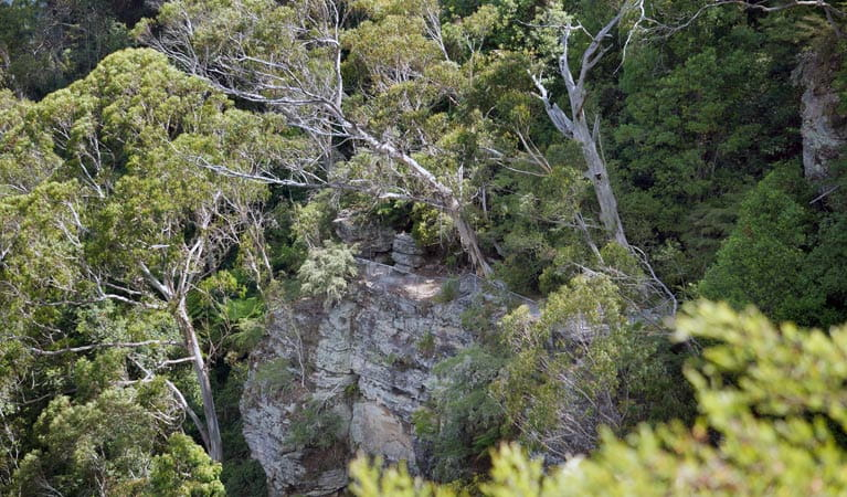 Juliets Balcony, Round Walking Track, Blue Mountains National Park. Photo: Steve Alton/NSW Government