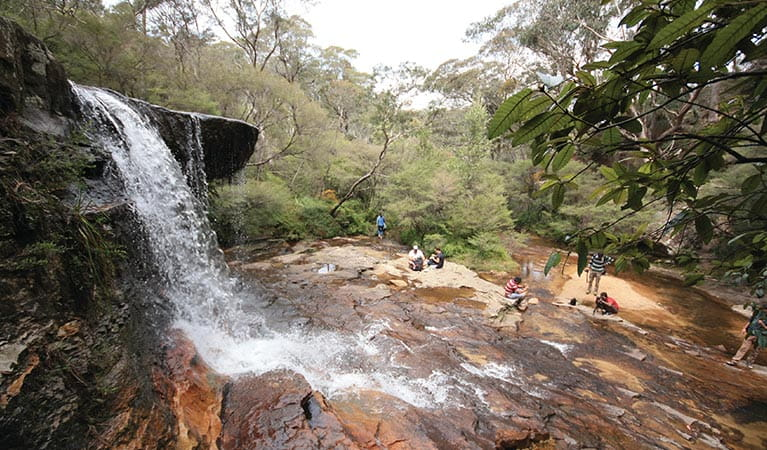 Visitors picnic below Weeping Rock waterfall, near Wentworth Falls, in Blue Mountains National Park. Photo: Elinor Sheargold/OEH