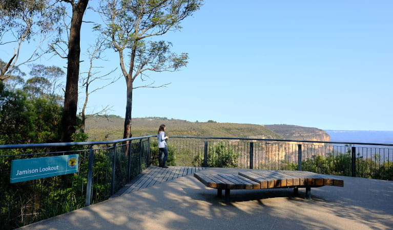 A visitor enjoys views at Jamison lookout, Wentworth Falls picnic area, Blue Mountains National Park. Photo: E Sheargold/OEH.