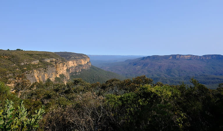 Escarpment and valley views from Jamison lookout, Wentworth Falls, Blue Mountains National Park. Photo: E Sheargold/OEH.