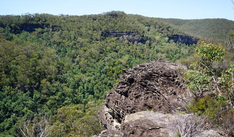 View of Bedford Gorge from Bedford Creek trail, Wentworth Falls to Woodford cycle, Blue Mountains National Park. Photo: Stephen Alton/OEH