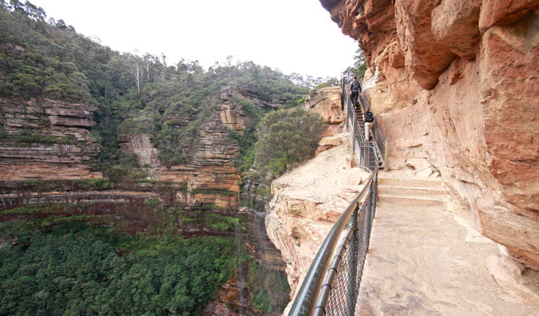 National Pass, Wentworth Falls, Blue Mountains National Park. Photo: E Sheargold/OEH.
