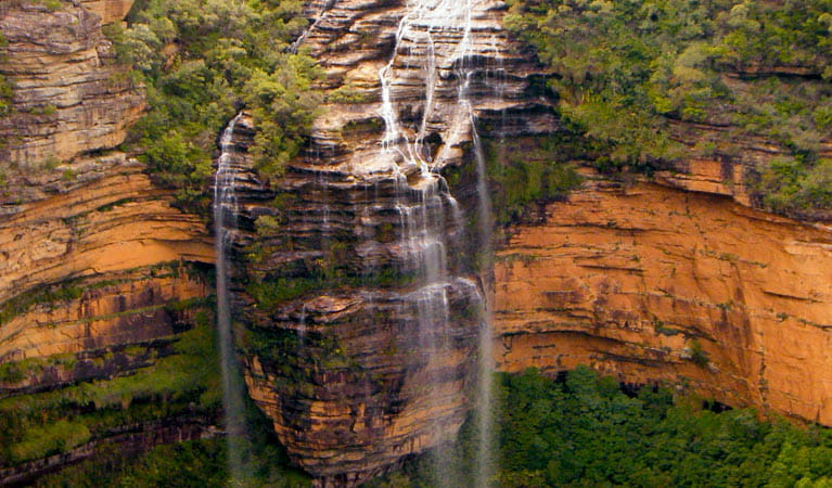 Wentworth Falls waterfall, Blue Mountains National Park. Photo: Steve Alton/OEH.