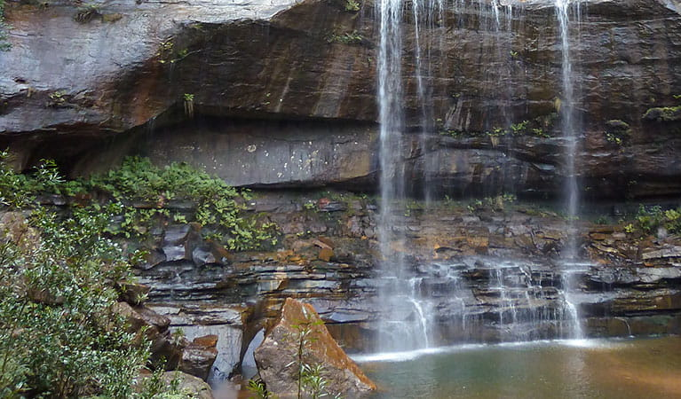 Wentworth Pass, Blue Mountains National Park. Photo: A Gliddon