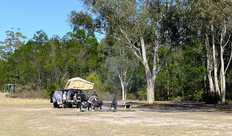 A group of campers at Burralow Creek campground, Blue Mountains National Park. Photo: E Sheargold/OEH.