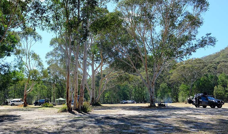 Burralow Creek campground, Blue Mountains National Park. Photo: E Sheargold/OEH.