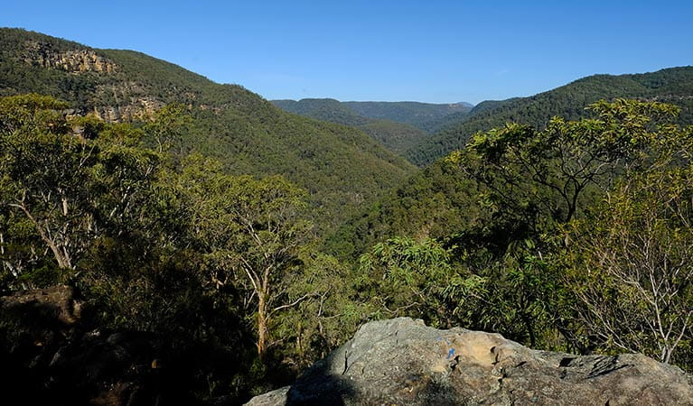 Lower Grose Valley views, Vale of Avoca lookout, Blue Mountains National Park. Photo: E Sheargold/OEH