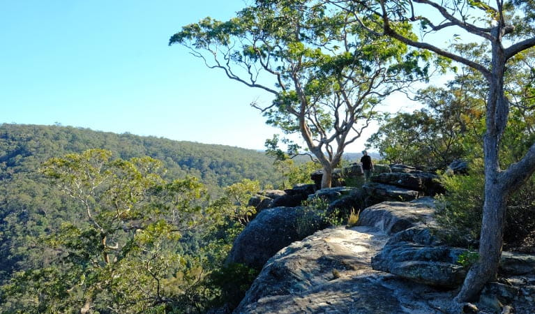 A man walks along the rock platform that forms unfenced Vale of Avoca lookout in Blue Mountains National Park. Photo: Elinor Sheargold/OEH
