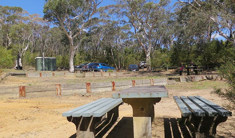 Mount Banks picnic area, Blue Mountains National Park. Photo: E Sheargold/OEH.