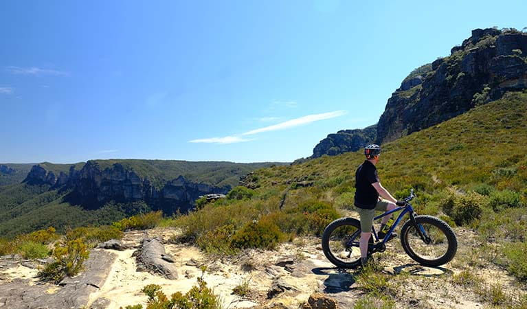 A bike rider and views on Mount Banks Road trail, Blue Mountains National Park. Photo: E Sheargold/OEH.