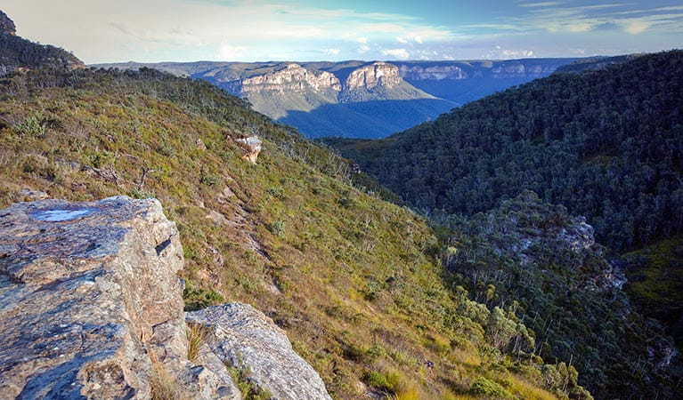 Views along Mount Banks Summit walk, Blue Mountains National Park. Photo: Nick Cubbin/OEH