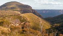 Afternoon sun on Mount Banks, Blue Mountains National Park. Photo: Craig Marshall/OEH