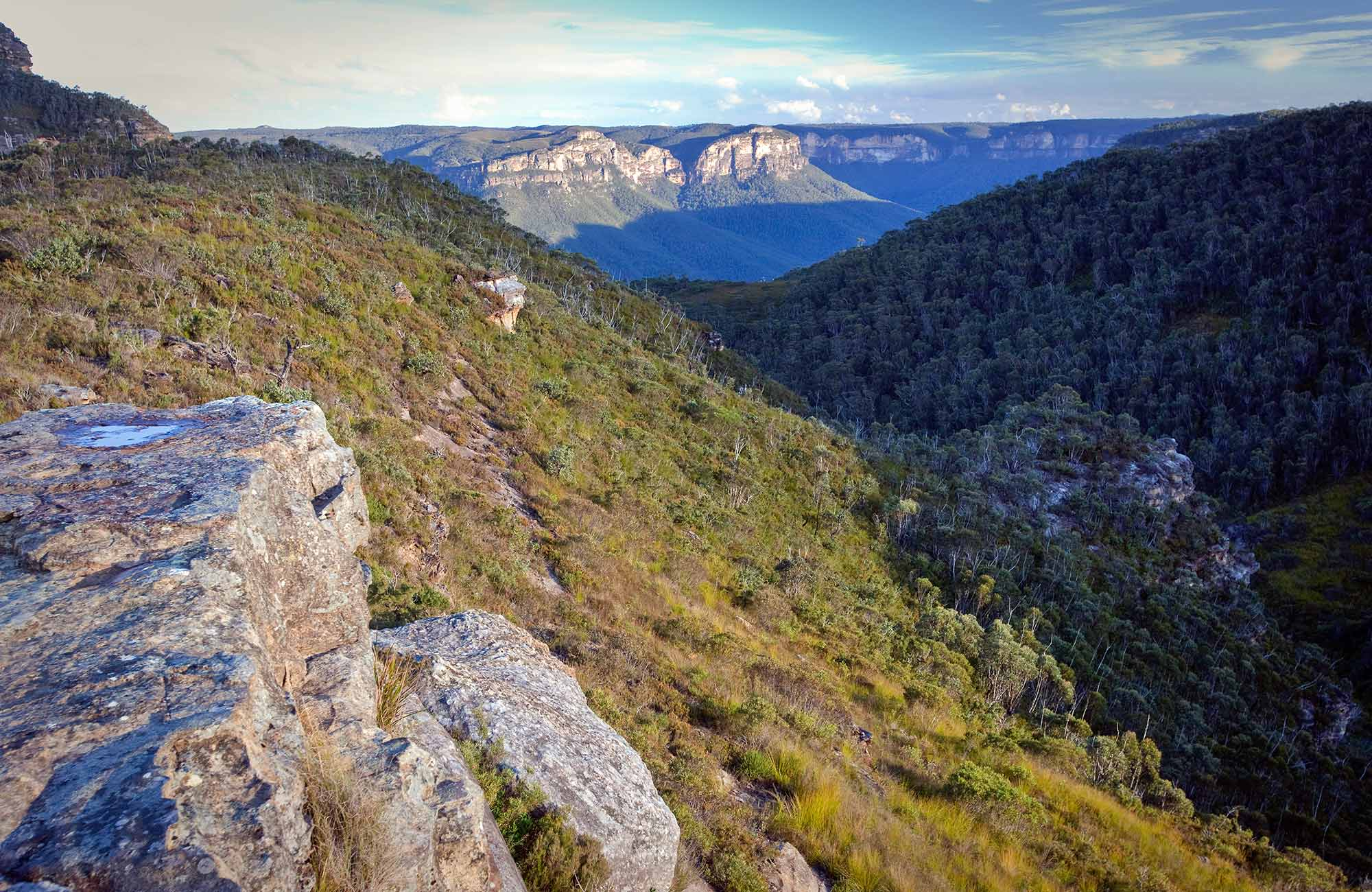 Mount Banks summit walk, Blue Mountains National Park. Photo: Nick Cubbin/OEH