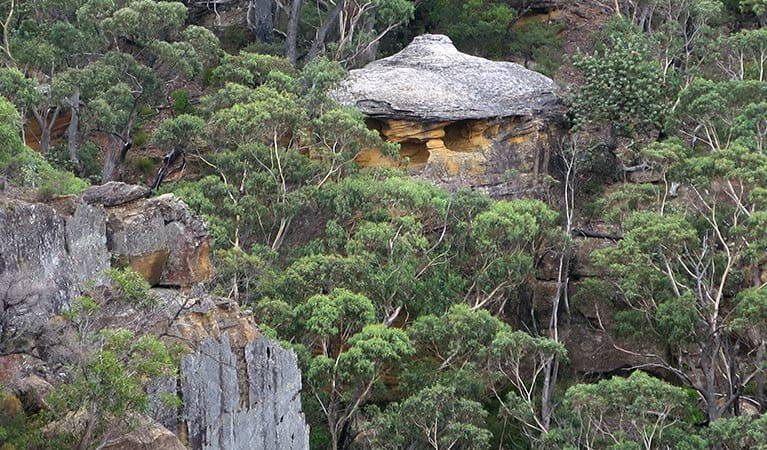 Chinamans Hat rock formation, Mount WIlson, Blue Mountains National Park. Photo: E Sheargold/OEH