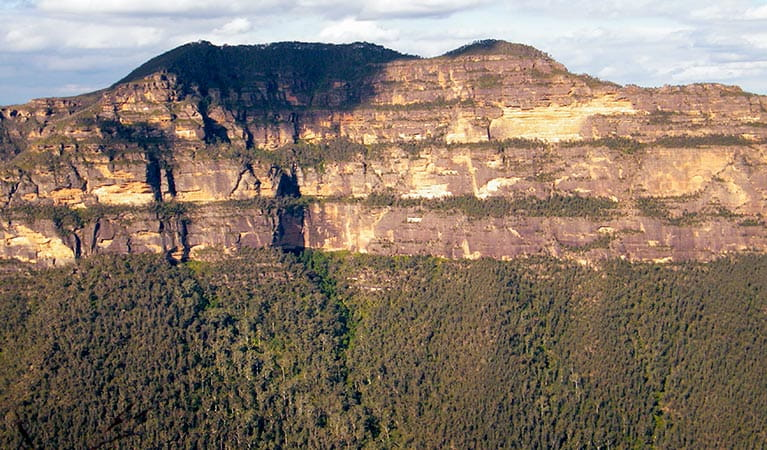 View of Mount Banks from Perrys Lookdown, in Blue Mountains National Park. Photo: Steve Alton © Steve Alton and DPIE