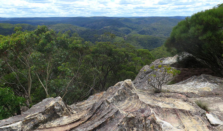 Du Faurs Rocks lookout views of Wollangambe wilderness, Blue Mountains National Park. Photo: E Sheargold/OEH.