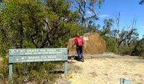 Hikers at start of Mount Banks Summit walking track, Blue Mountains National Park. Photo: E Sheargold/OEH