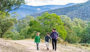 A family walk up Carlons Creek track, near Dunphys campground, Blue Mountains National Park. Photo: Simone Cottrell/OEH.