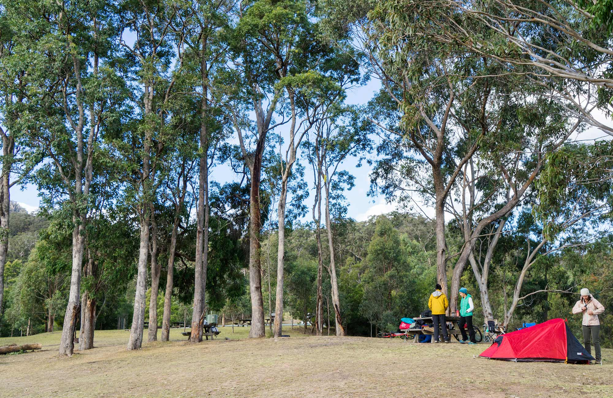 Tent and campers at Dunphys campground, Blue Mountains National Park. Photo: Simone Cottrell/OEH.