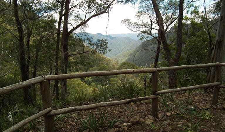 Mountain vista framed by trees along Ruby Creek walking track, in the Southern Blue Mountains area of Blue Mountains National Park.  Photo: Jules Bros/DPIE