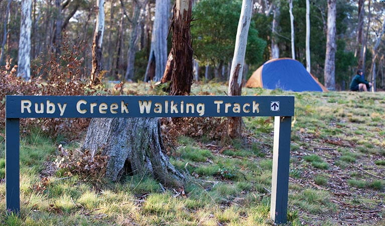 Walking track sign in a grassy forest clearing, with a tent and camper in the background.  Photo: Nick Cubbin/DPIE