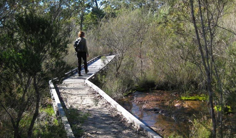 Falcon Crescent walkway, Bomaderry Creek Regional Park